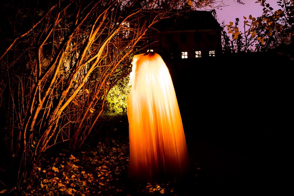 Ljusverk: Familjen Skyttes Demoner
